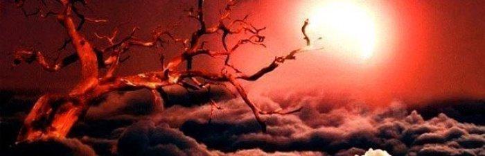 (Источник фото: sorularlaislamiyet.com)