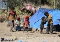 Повальный голод в Йемене: могут ли международные акции спасти людей?