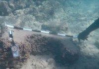В Сирии нашли неизвестный ранее древний морской порт