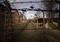 Лавров: Россия готова наращивать усилия в борьбе с отрицанием Холокоста