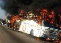 Более 50 человек погибли в ДТП в Камеруне