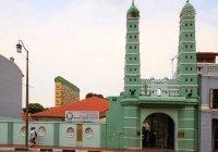 В Сингапуре задержан подросток, готовивший теракты в мечетях