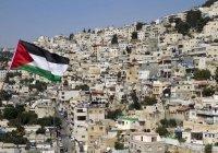 США возобновят оказание гуманитарной помощи Палестине