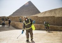 АТОР сообщила о падении стоимости путевок в Египет