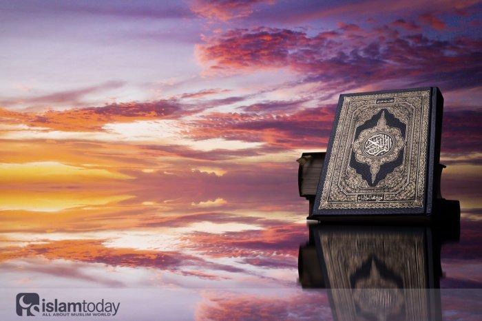 Какую суру Пророк Мухаммад (ﷺ) оценил, как равную всему Корану? (Источник фото: shutterstock.com)