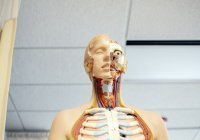 Доктор назвал один из редких симптомов COVID-19