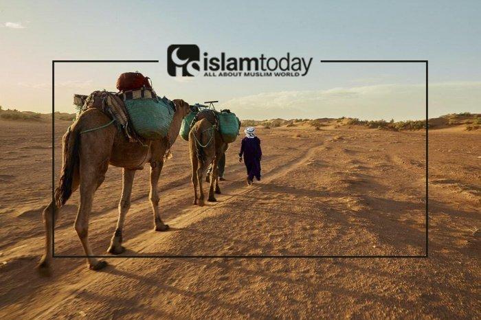 Как Пророк Мухаммад (с.а.с.) создавал государство? (Источник фото: freepik.com)