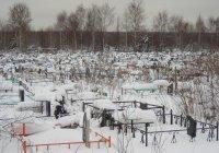В Татарстане верующим запретили установку могильных оградок