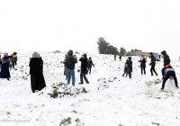 Египет и Ливию накрыли снегопады