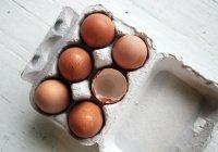 Обнаружено, как выбрать качественные яйца