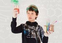 Названо число россиян, готовых отдать своих детей в науку