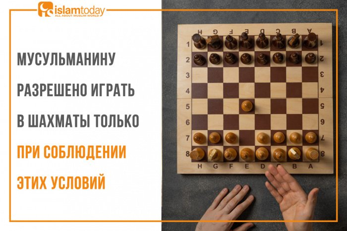 Мусульманину разрешено играть в шахматы только при соблюдении этих 4 условий. (Источник фото: freepik.com)