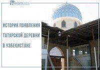 Татары Узбекистана: история старинной татарской деревни Ногай Курган. Часть 2