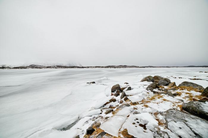 Погода станет мягкой и температура воздуха в период потепления окажется в диапазоне 2-5 градусов мороза (Фото: unsplash.com)