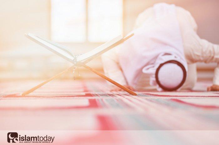 Время и порядок прочтения аср-намаза. (Источник фото: shutterstock.com)