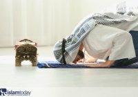 Зухр-намаз: всё что нужно знать о полуденной молитве