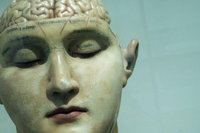 Сверхдолгожители – люди, чей возраст превышает 100 лет – имеют необычную общую версию гена, который отвечает за формирование белка Forkhead box O3 (FOXO3) (Фото: unsplash.com)