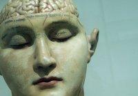 Выявлен ключевой фактор долголетия мозга