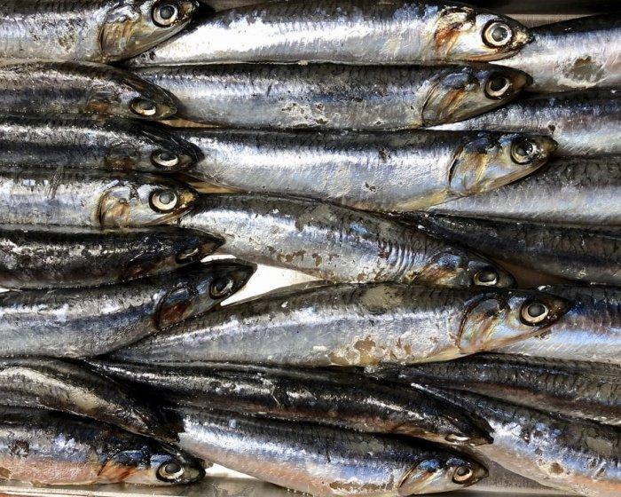 По словам врача, передозировки витамина A опасны для жизни (Фото: unsplash.com)