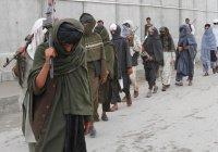ООН обвинила «Талибан» в половине смертей мирных афганцев