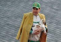 Бердымухамедов учредил национальный праздник в честь любимой собаки