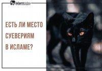 Вера в суеверия – что это?