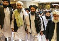 Власти Афганистана допустили участие талибов в выборах
