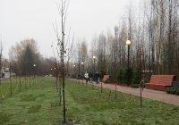 В Дагестане высадят 90 тыс. деревьев в память о погибших в ВОВ