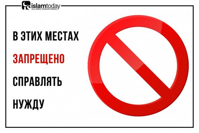 В этих местах запрещено справлять нужду (Источник фото: freepik.com).