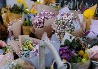 Специалисты рассказали, как правильно выбрать цветы