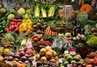 Медик рассказал, когда лучше всего употреблять фрукты