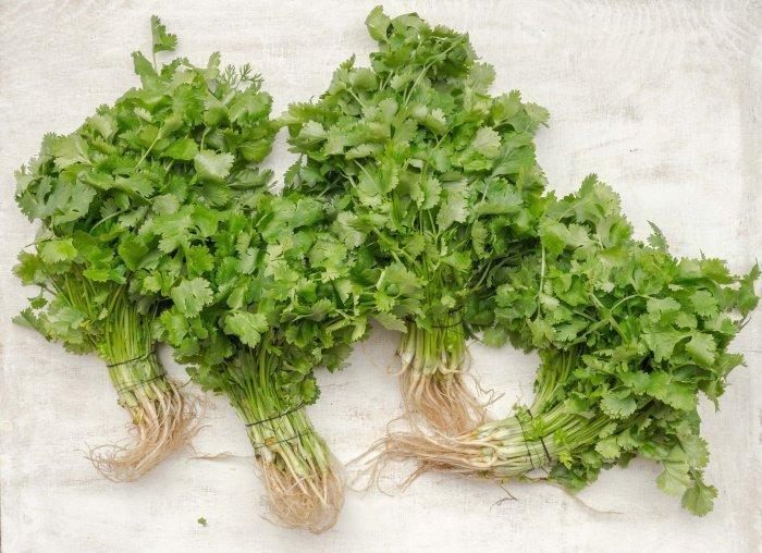 Перед употреблением зелень необходимо тщательно обработать (Фото: unsplash.com).