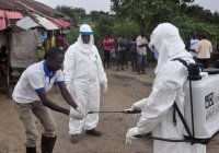 В Африке число зараженных коронавирусом приближается к 4 миллионам