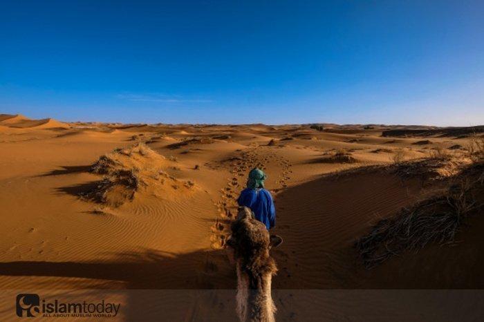 Как изменилась жизнь Абу Зарра аль-Гифари после поездки в Мекку? (Источник фото: freepik.com)