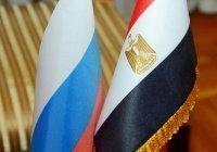 Год гуманитарного сотрудничества России и Египта планируется открыть в мае