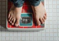Учёные выявили связь между весом и памятью