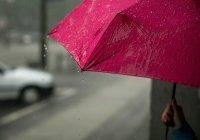 Метеорологи дали прогноз на весну и лето