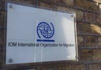 Россия приняла устав Международной организации по миграции