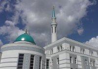 Сотрудники фонда и мечети «Ярдэм» привились от коронавируса