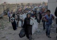 Сирия – на пороге нового миграционного кризиса