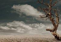 Россиянам предсказали засуху и наводнения