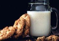 Нутрициолог развеяла миф о пользе молока