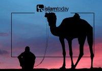 Великий сподвижник Хамза ибн Абу аль-Мутталлиб: первый знаменосец ислама