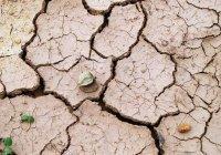 Раскрыта главная опасность изменения климата