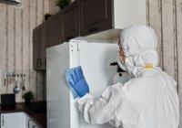 В России обнаружили новые штаммы СOVID-19