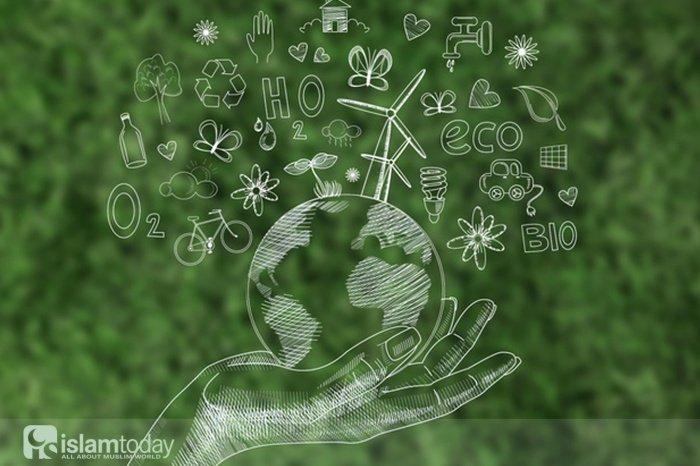На ком лежит ответственность за сохранность природных богатств? (Источник фото: freepik.com).
