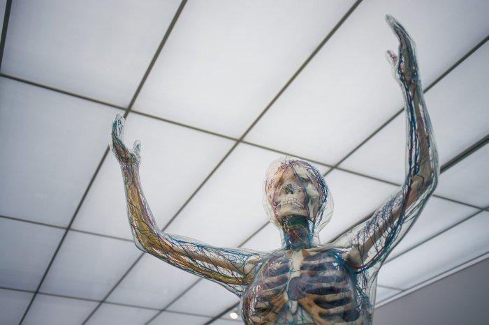 При тревожности человек становится дёрганным (Фото: unsplash.com).