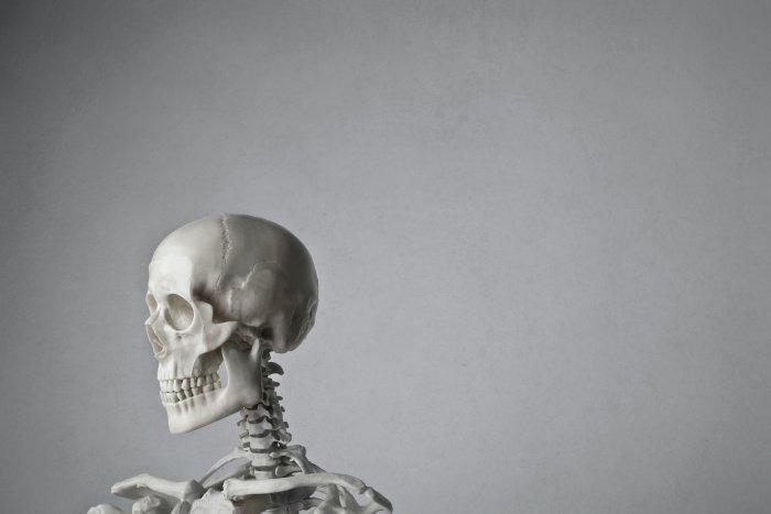 Люди на протяжении долгого времени жили рядом с неандертальцами (Фото: unsplash.com).