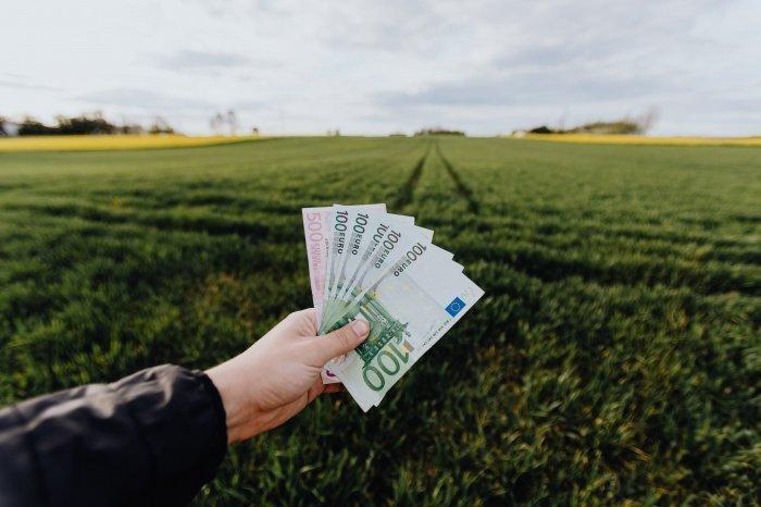 Большинство россиян не устраивает их зарплата (Фото: unsplash.com).