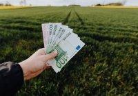 Стало известно, как россияне относятся к своим зарплатам